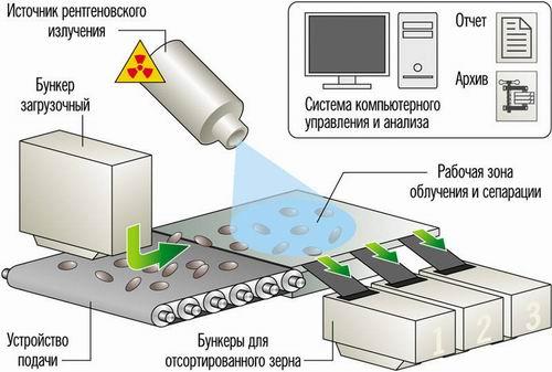 Общая схема экспресс-рентгенодиагностики и сепарации