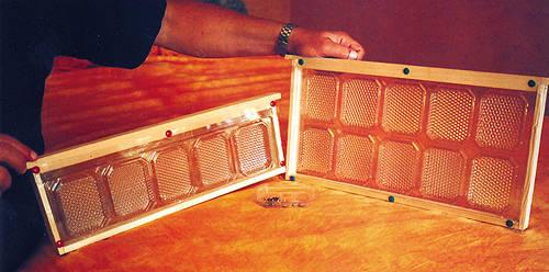 Рамки СОТАР - прозрачные блоки с мини-кюветами для сбора сотового меда