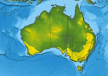 Австралия, расширение посевов пшеницы в конце XIX в.